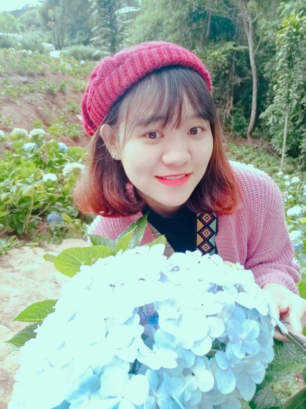Checkin tại cánh đồng hoa cẩm tú cầu Đà Lạt