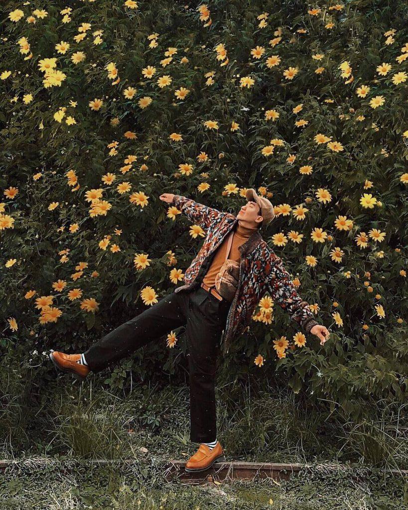 """Hoa dã quỳ cũng chẳng phải loài hoa cao sang gì, ấy thế nhưng nó vẫn là một """"đặc sản"""" của Đà Lạt nhiều người nhớ đến. (Ảnh: monsimi)"""