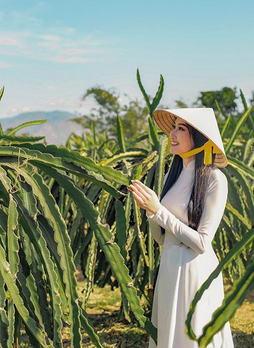 [Caption Người đẹp cho biết mình là người đầu tiên của Bình Thuận đăng quang các cuộc thi sắc đẹp và dám thử sức ở các đấu trường quốc tế. Chính vì vậy, Đoàn Hồng Trang nhận được rất nhiều sự quan tâm, ủng hộ của các đơn vị lãnh đạo, người dân Bình Thuận. Cô được fans gọi với danh dưng đầy ưu ái 'Hoa thanh long'.