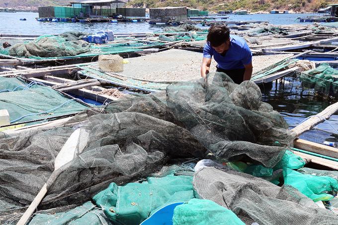 Ông Phan Văn Chương đang rủ lưới và lồng tôm sau nhiều ngày phơi nắng vì không nuôi. Ảnh: Xuân Ngọc.