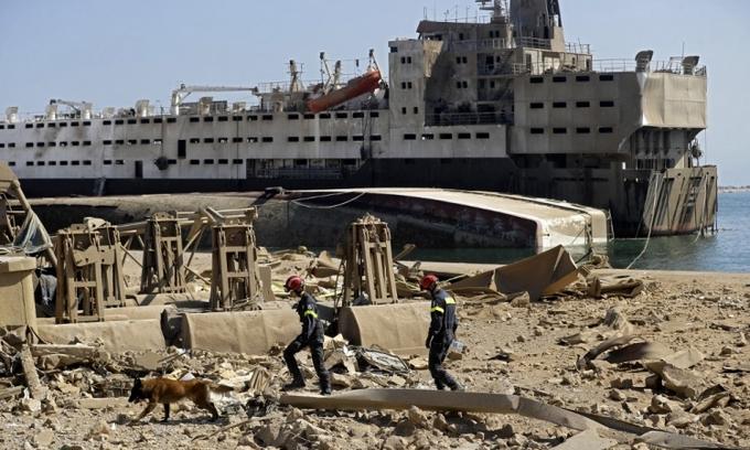 Lực lượng cứu hộ cùng chó nghiệp vụ tại cảng Beirut, Lebanon, hôm 7/8. Ảnh: AFP.