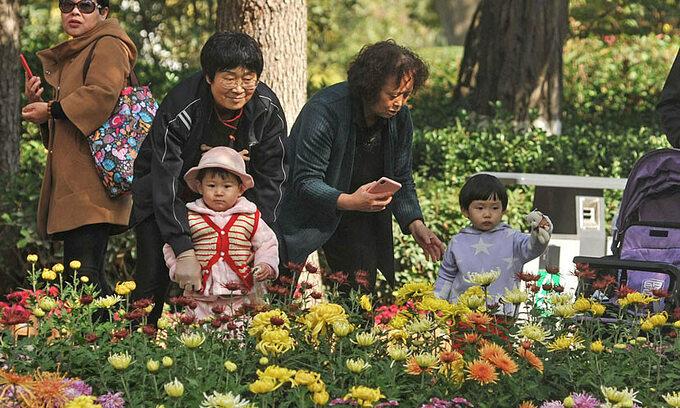 Người lớn tuổi đưa cháu đi ngắm hoa cúc tại một công viên ở tỉnh Cam Túc. Ảnh: Sui Zhen/People Visual.