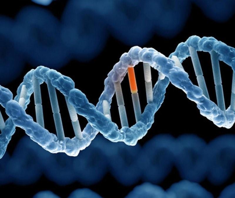 Người mẹ có bệnh sử động kinh khả năng cao sẽ di truyền sang con.